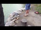 мой кролик плавает!!!my...my...my kris_Video